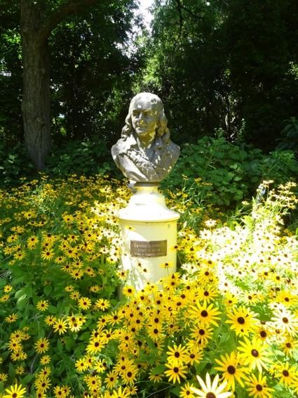 Statue de Linnée, le père de la nomenclature végétale
