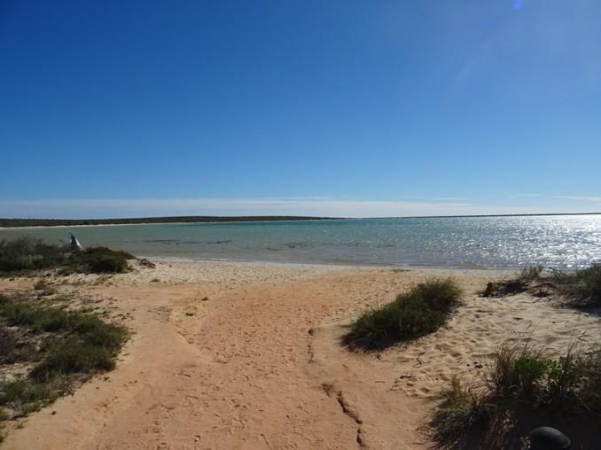 Little lagoon